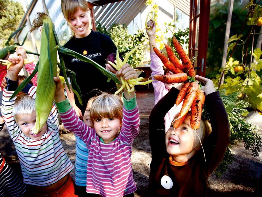 Barnen lär om odling och trädgård | Förskoletidningen